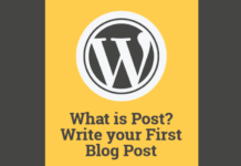 Write your first wordpress blog post